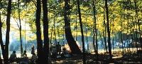 escursioni parco nazionale del gargano